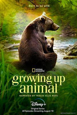 动物成长第一季