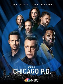 芝加哥警署第九季
